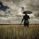 Personal Umbrella Insurance Policy